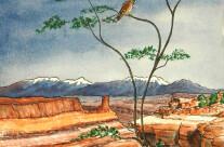 Canyonland Sentinels